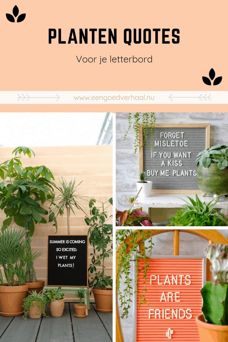 planten quotes letterbord