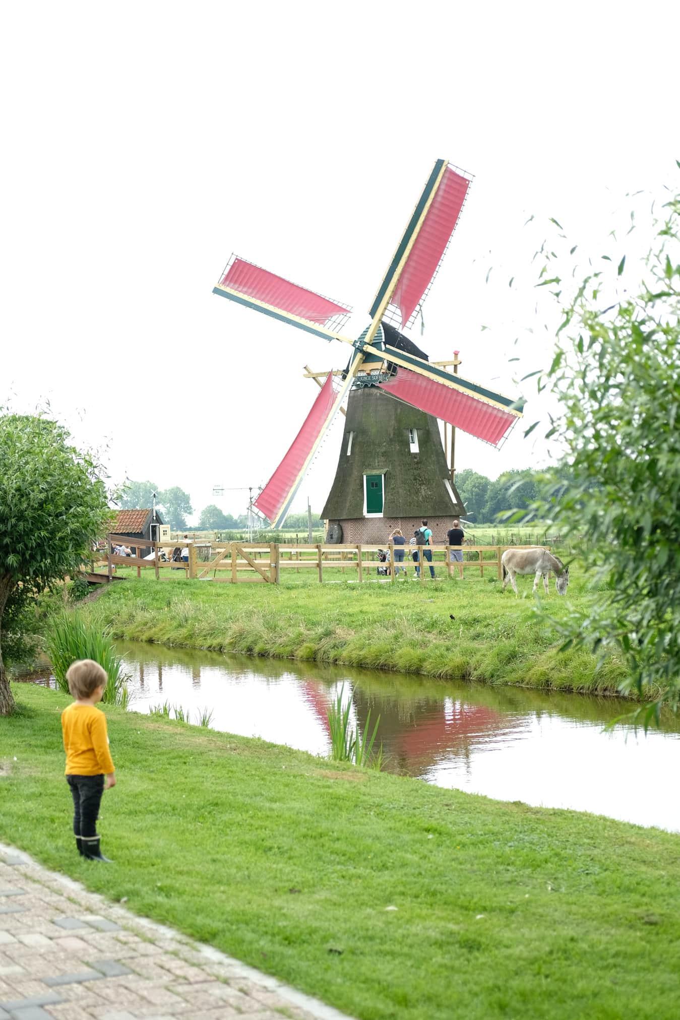 een dagje weg met kinderen in zuid holland