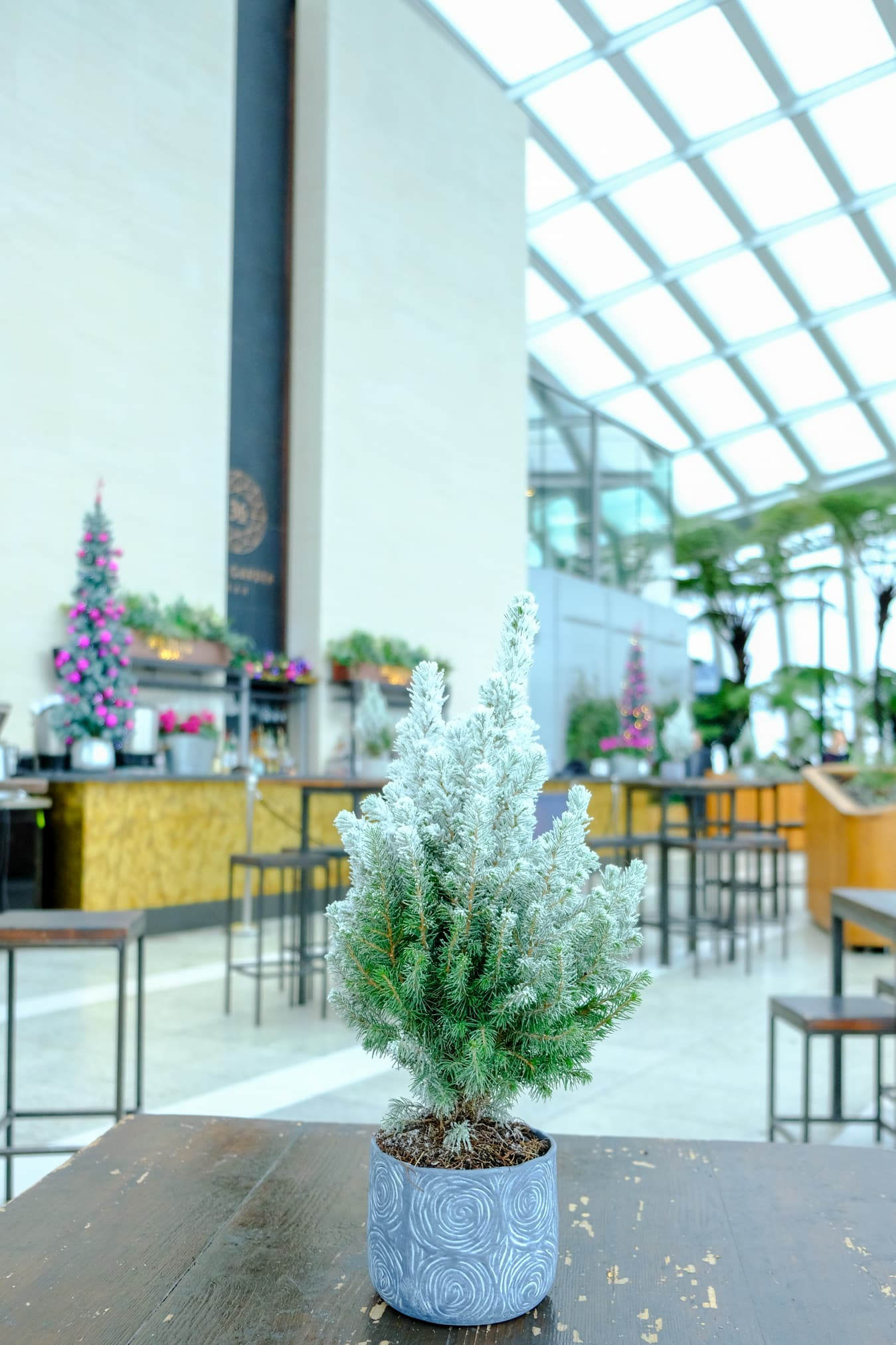 breakfast christmas sky garden london