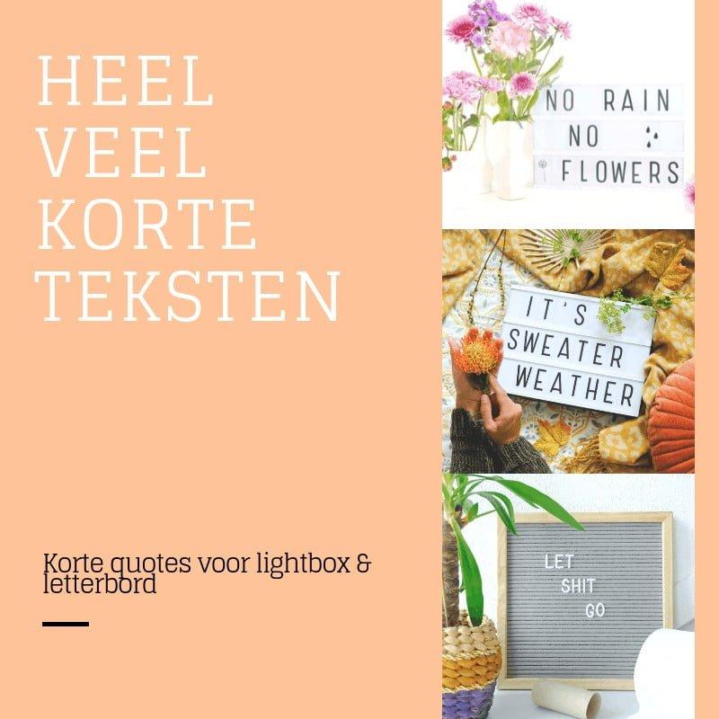 korte lightbox quote