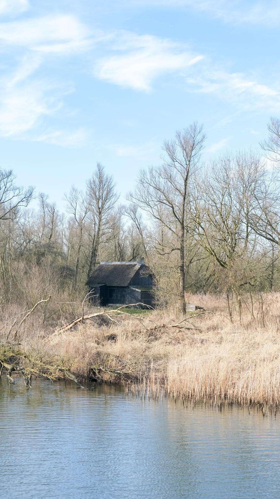 boswachtershuisje biesbosch