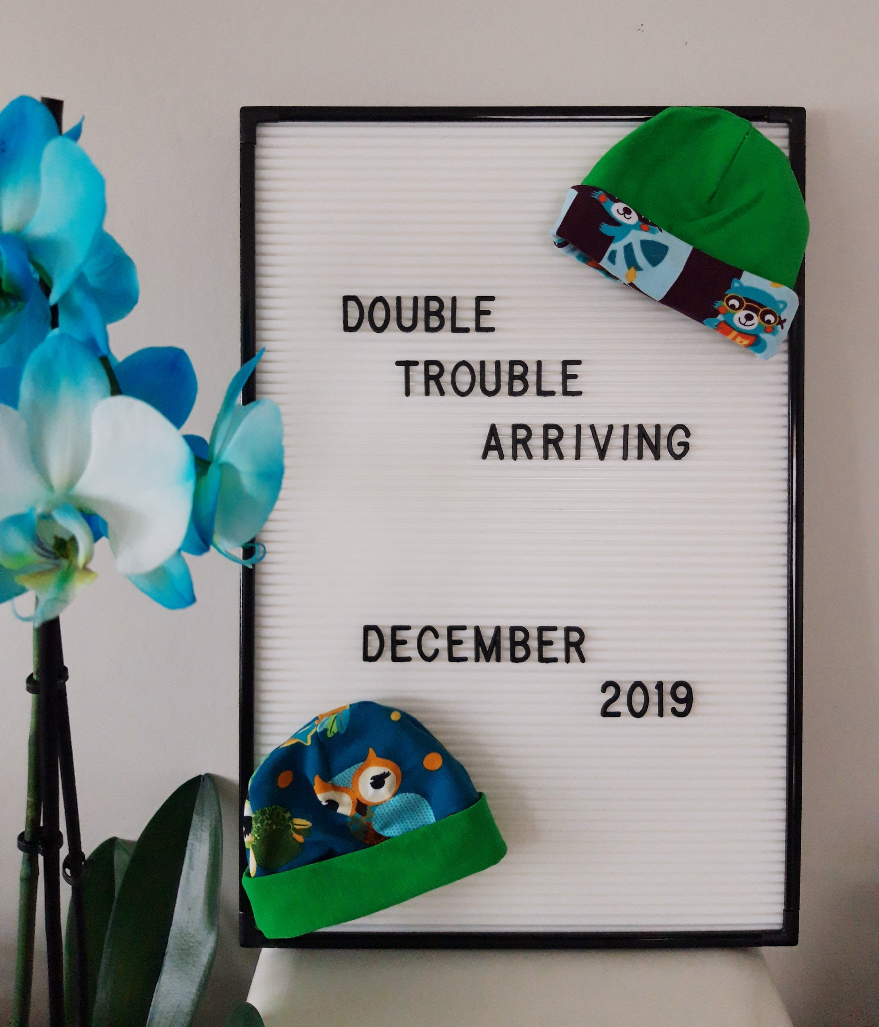 aankondiging tweeling letterboard