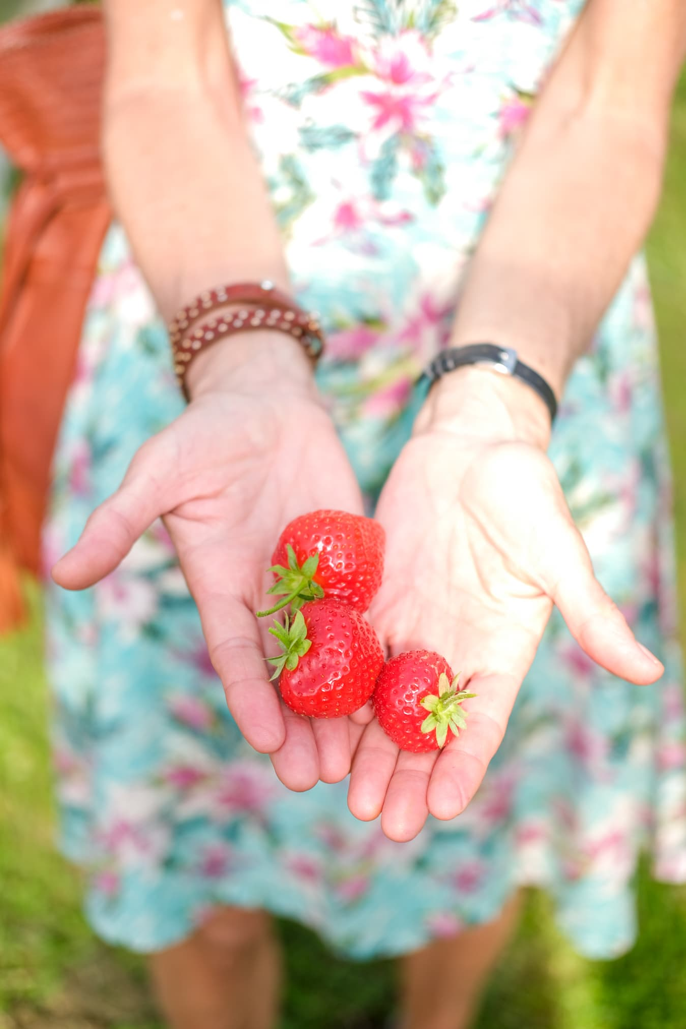 eigen geplukte aardbeien