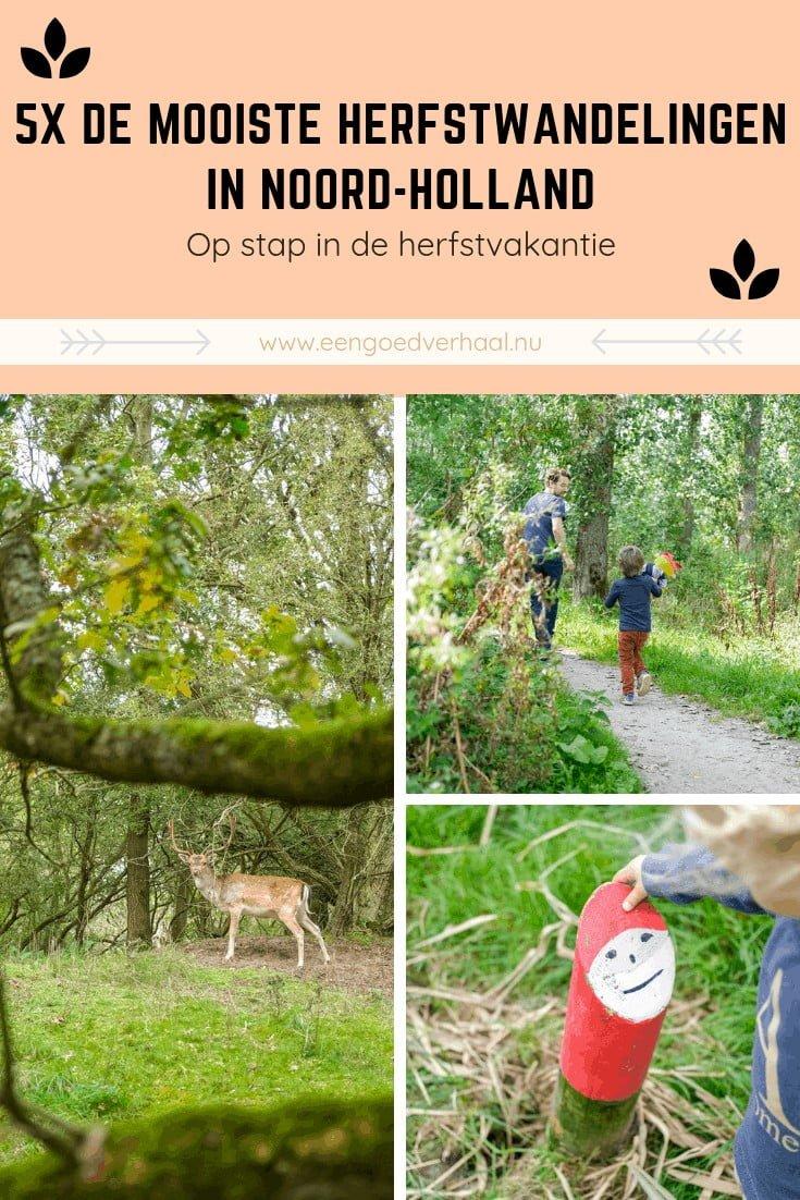 herfstwandelingen maken in noord-holland met kinderen