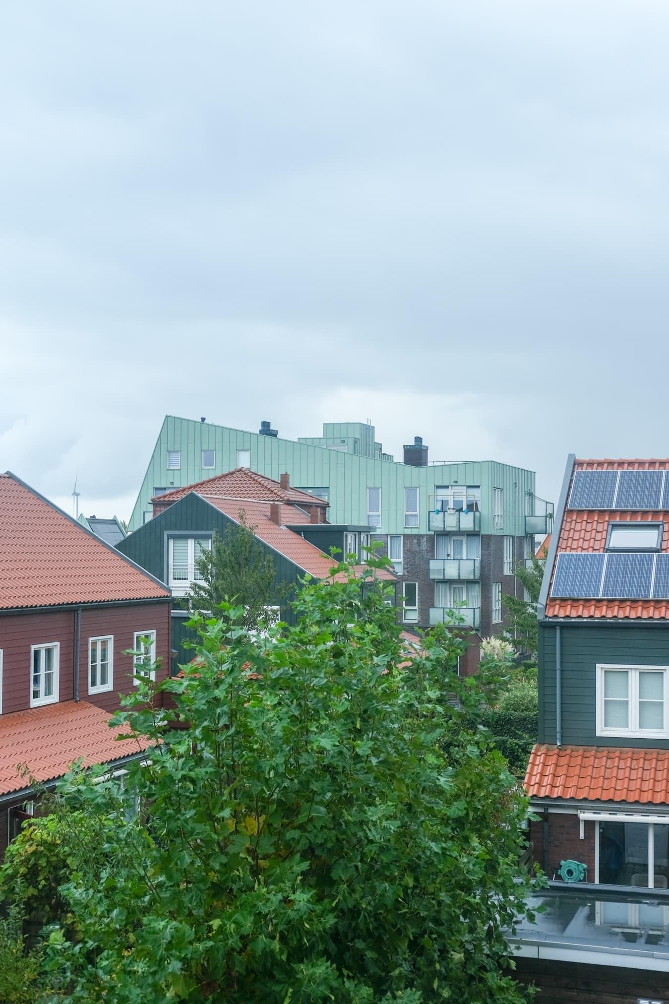 zonnepanelen of sedum dakbedekking