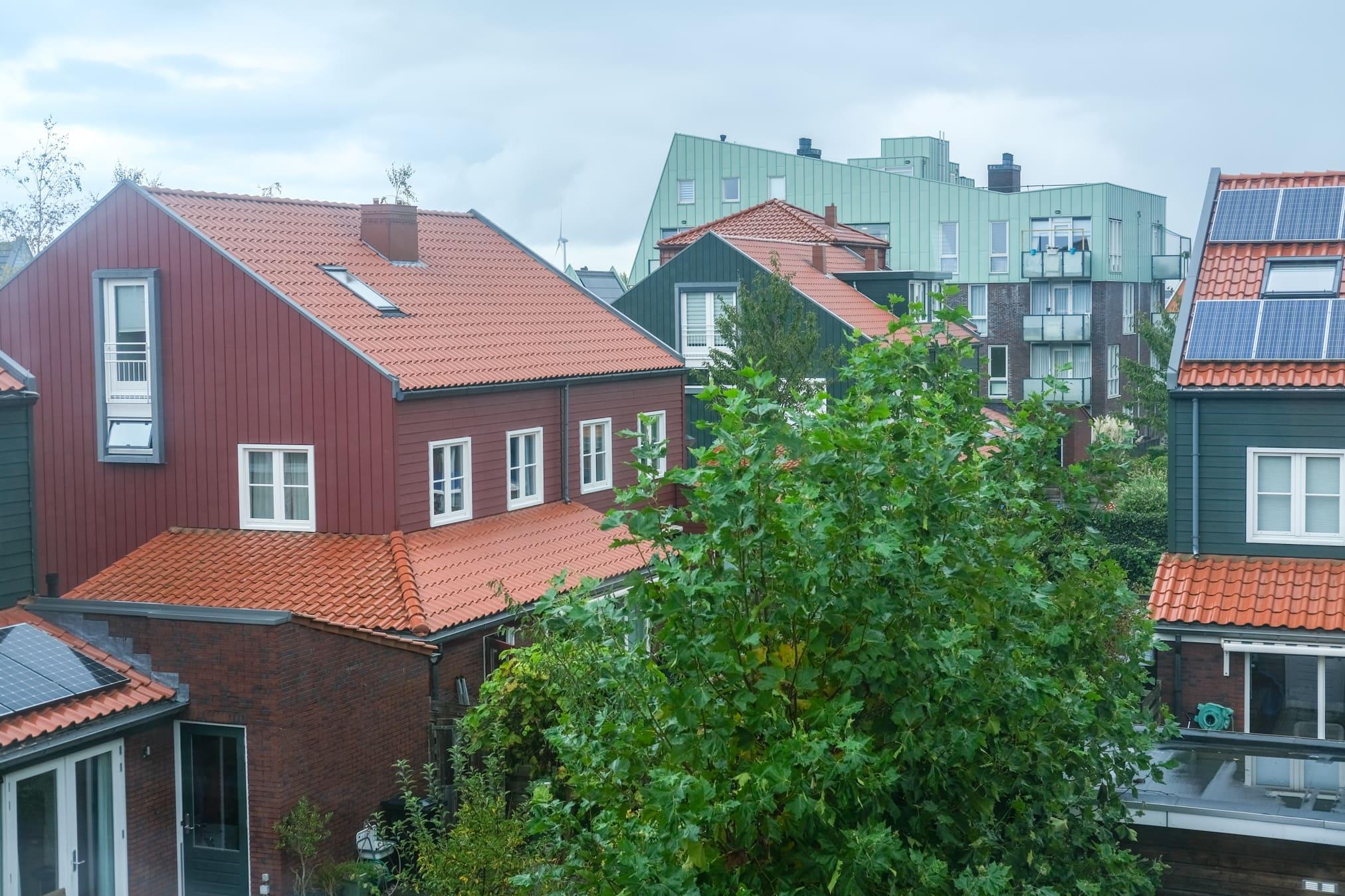 groen dak met zonnepanelen