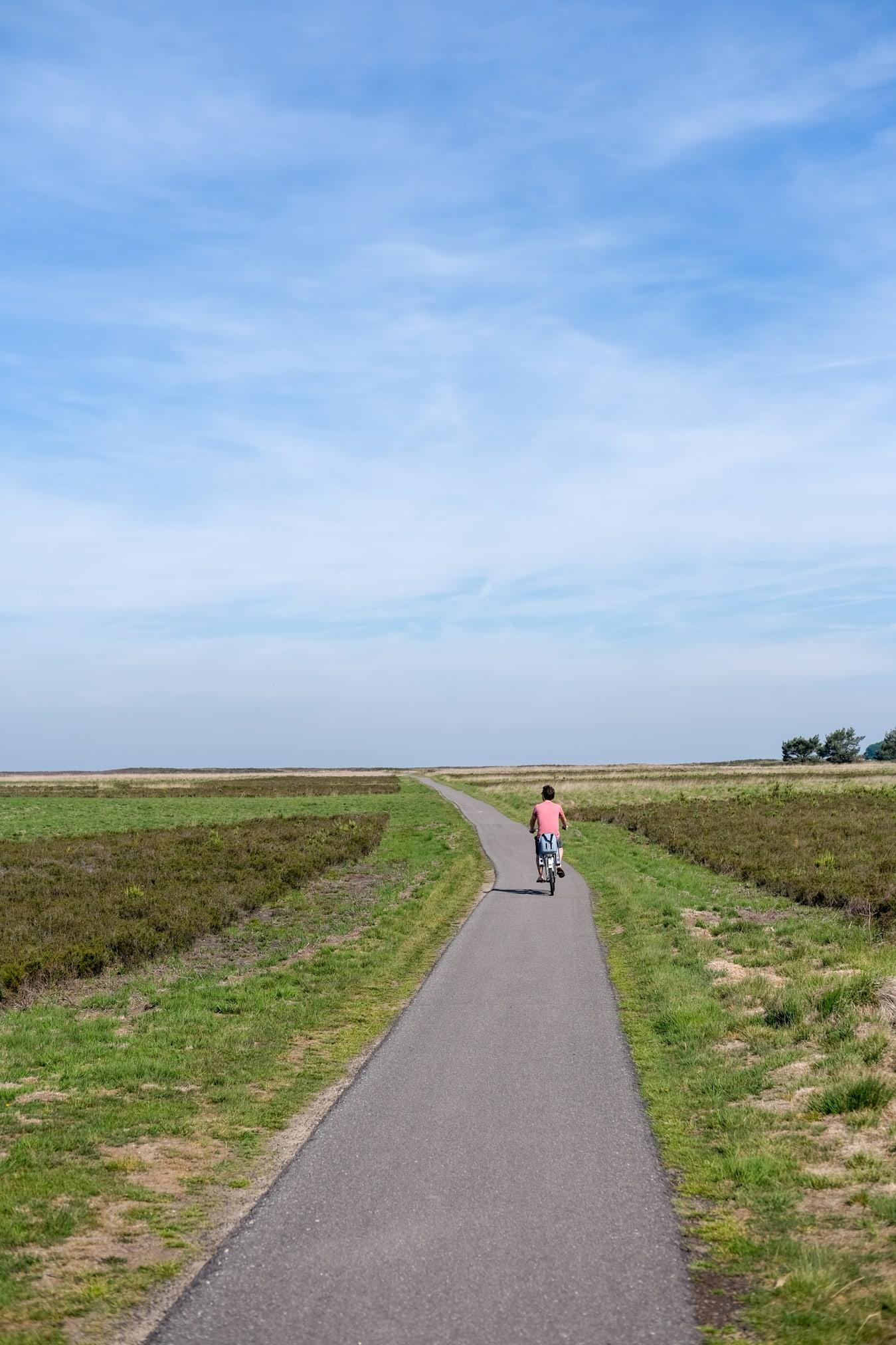 elektrische fietsen voordelen