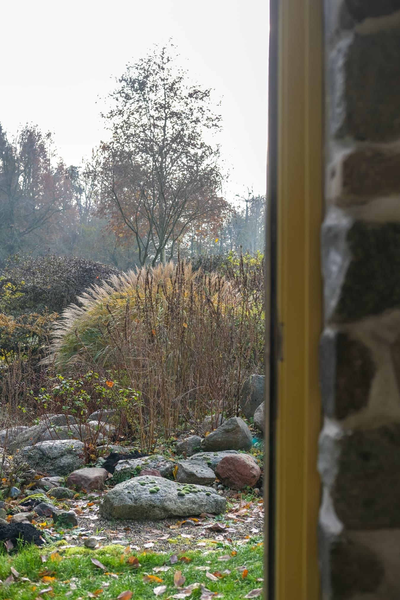 uitzicht vanuit natuurhuisje harkstede